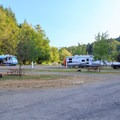 Many open RV sites on a summer weekday.- Loon Lake Lodge + RV Resort