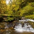 McDowell Creek below lower McDowell Creek Falls in autumn.- Oregon Fall Adventures