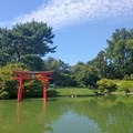 This Japanese garden in the Brooklyn Botanic Garden is one of the oldest in the United States.- 10 Great Outdoor Escapes In New York City, NY