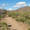 The Rings Loop Trail flattens out as it loops back.- 8 Must-do Mojave Desert Adventures