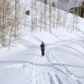 Following the road back to the parking area.- 22 Must-do Snowshoe Trails in the West