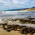 Seaweed along Jalama Beach.- How to Still Enjoy California's Central Coast this Spring