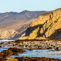 Bird life is abundant at Jalama Beach.- 10 Reasons to Visit Santa Barbara in the Fall