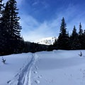 Approaching Buffalo Mountain from the Gore Range Trail.- Great Snowshoeing Near Denver