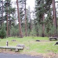 A typical site at Ochoco Divide Campground.- A Guide to Camping in Oregon