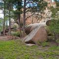 Feeling small on Little Scraggy, Buffalo Creek Recreation Area.- Colorado's Best Mountain Biking