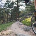Elk Meadow + Bergen Peak Loop: A quick descent.- 10 Classic Denver Mountain Biking Trails