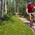Descending on the Mule Deer Loop.- 10 Classic Denver Mountain Biking Trails