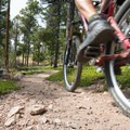 West Magnolia Mountain Bike Loop: The rocks here make for great traction.- 10 Classic Denver Mountain Biking Trails