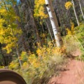 Blasting through the golden aspen groves on the Mill Creek Trail.- 30 Spectacular Fall Adventures in Colorado