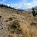 Bucyrus Dredge Loop Mountain Bike Ride: The beginning of the Colorado Trail in the golden hue of late fall.- Dillon Reservoir's Best Hikes, Rides + Camping