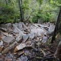 Garfield Ridge Trail on Pemigewasset Loop. - 8 Not-To-Be Missed White Mountain Adventures