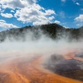 Microbial mats surrounding Grand Prismatic Spring.- Guide to the Geysers + Hydrothermal Features of Yellowstone National Park