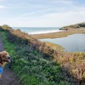 The view as you approach Rodeo Beach along the Fort Cronkhite Loop Trail.- 15 of California's Best Dog-Friendly Hikes