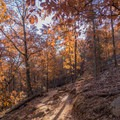 Lovely fall colors in November at Kennesaw Mountain.- 10 Must-Do Hikes near Atlanta, GA