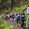 Hike it Baby group hitting the Horsetail, Ponytail, Triple Falls Hike.- Must-See Views in Our National Scenic Areas