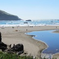Bird Island at Harris Beach.- 10 Best Locations for Spotting Wildlife on the Oregon Coast