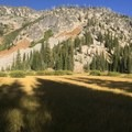 The East Lostine River meadow.- Wallowa Logging Threatens the Lostine Corridor