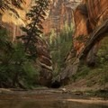 Beautiful view from the bottom of the Subway section looking back up the trail.- A Complete Guide to Hiking in Zion National Park