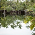 The Kalahuipua'a Fishponds near Makaiwa Beach are fed by freshwater springs and ocean water. - Big Island's Best Beaches