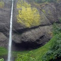 Latourell Falls.- Must-See Views in Our National Scenic Areas