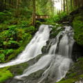 Horseshoe Creek Falls, Siouxon Creek Hike.- Waterfalls on the Washington Side of the Columbia River Gorge