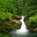 Siouxon Creek Falls.- Waterfalls on the Washington Side of the Columbia River Gorge