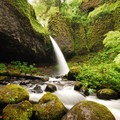 Ponytail Falls.- Columbia River Gorge National Scenic Area