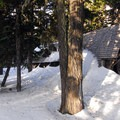 Tilly Jane A-Frame.- 12 Reasons to Visit Mount Hood in the Winter