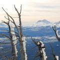 View of Broken Top (9,177 ft) and the Three Sisters from Black Butte.- 10 Amazing Snowshoe Trails in Oregon