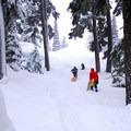 Sledders ascending the Cinder Cone at Mt. Bachelor.- Best Winter Adventure Destinations