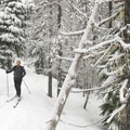 Skiing to Upper Twin Lake.- Great Cross-Country Ski Trails on Mount Hood