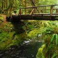 Bridge and deep pools near Chinook Falls on Siouxon Creek.- 30 Favorite Hikes Near Portland