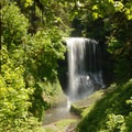 Trail of 10 Falls: Middle North Falls, Silver Falls State Park.- Oregon's 75 Best Day Hikes