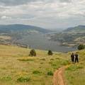 Coyote Wall Hike: View over the Columbia River Gorge.- Columbia River Gorge National Scenic Area