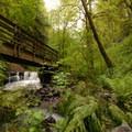Bridge over Balch Creek in Forest Park.- 30 Favorite Hikes Near Portland