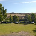 Open car/tent campsites at Deschutes River State Recreation Area Campground.- Let's Go Camping
