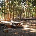 Typical walk-in campsite at Tilly Jane Campground.- Escape to Mount Hood's 17 Best Campgrounds