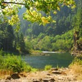 View looking out over the Clackamas River from Big Eddy Picnic Area.- 31 Best Beaches + Swimming Holes in-and-around Portland, Oregon
