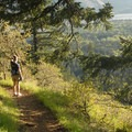 Columbia River views on Dog Mountain.- Oil trains are risking it all in the Columbia River Gorge