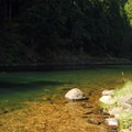 Carter Bridge swimming hole on the Clackamas River.- 31 Best Beaches + Swimming Holes in-and-around Portland, Oregon