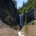 Tamanawas Falls.- 12 Epic Hikes for You and Your Dog in the Pacific Northwest