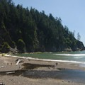 Surfers dot the water at Oregon's Short Sand Beach.- Best West Coast Beaches for Beginner Surfers