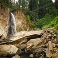 Drift Creek Falls.- Oregon's 75 Best Day Hikes