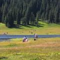 View looking west across Todd Lake's northern meadow.- 8 Favorite Forests for Family Adventures