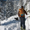 Skiing up the trail to Tom Dick and Harry Mountain.- 8 Amazing Snow Adventures to Take with Your Dog