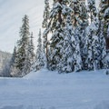The Mud Creek Loop is a challenging route off of the Trillium Lake Loop.- 10 Amazing Snowshoe Trails in Oregon