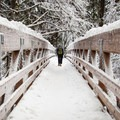 A sturdy bridge over the Hot Springs Fork on the way to Bagby.- Portland's Nearest Hot Springs