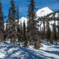 Mount Hood from the White River West ski and snowshoe trail.- Snowshoeing on Mount Hood