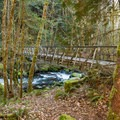 The bridge over Herman Creek on the way to Pacific Crest Falls.- Hiking in the Columbia River Gorge